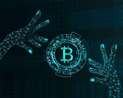 Who Owns Bitcoin? | Bitcoin Awareness Worldwide